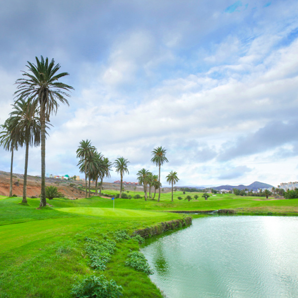 Palm trees and water surround this hole on El Cortijo Golf, Gran Canaria