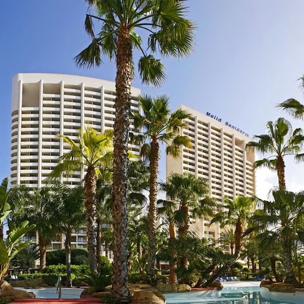 Melia Benidorm Hotel with palms in foreground