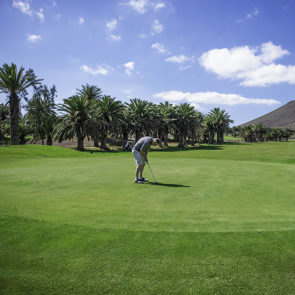 Golfer putting on Costa Teguise Golf, Lanzarote