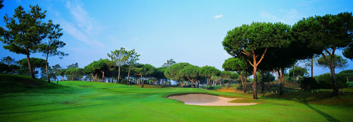 Umbrella pines line this hole on Pestana Vila Sol Golf Course
